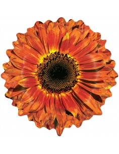 Globo Orange Flower Forma 61cm
